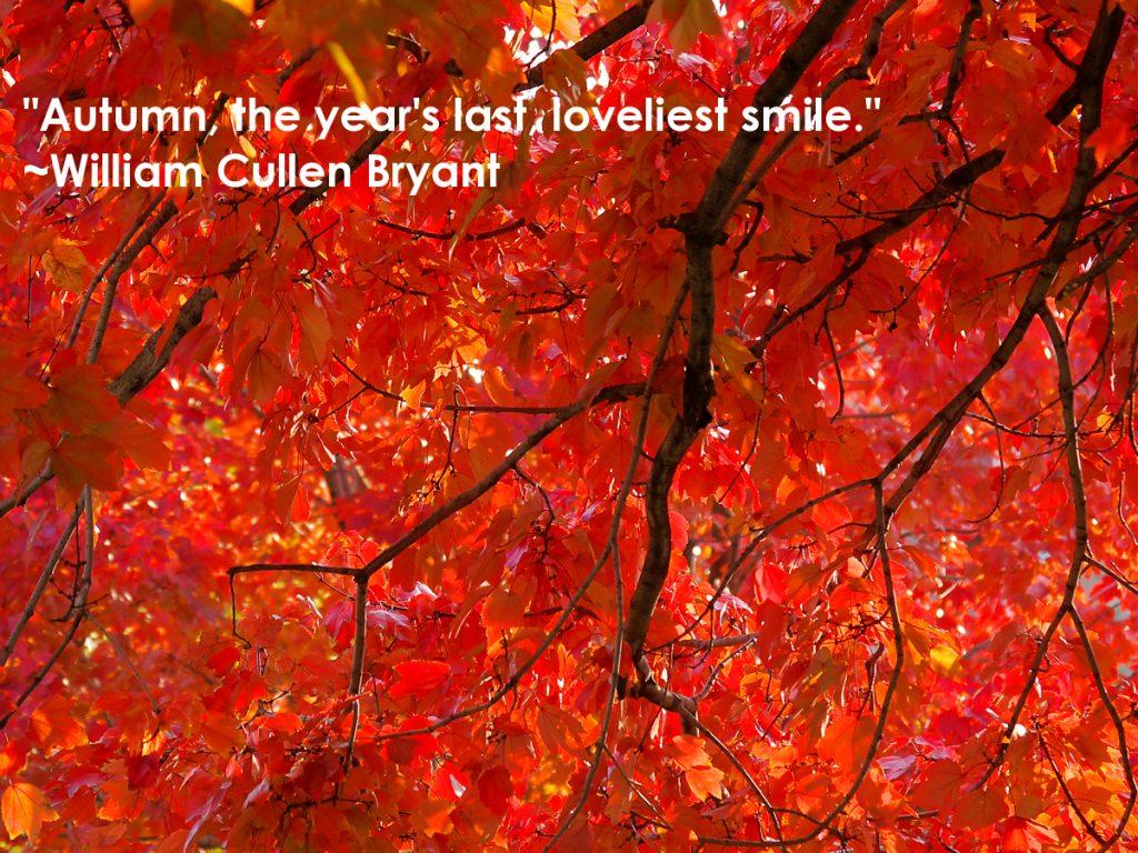 Autumn quote William Cullen Bryant
