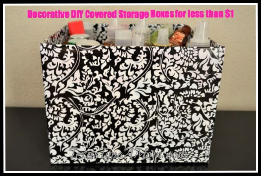 Covered Organization Storage Box