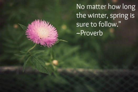 Proverb on seasons