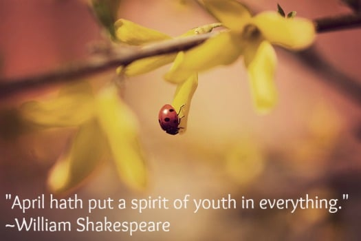"""April hath put a spirit of youth in everything."" ~William Shakekspeare"