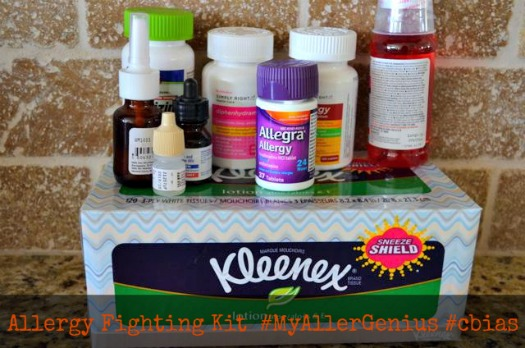 Allergy Fighting Kit