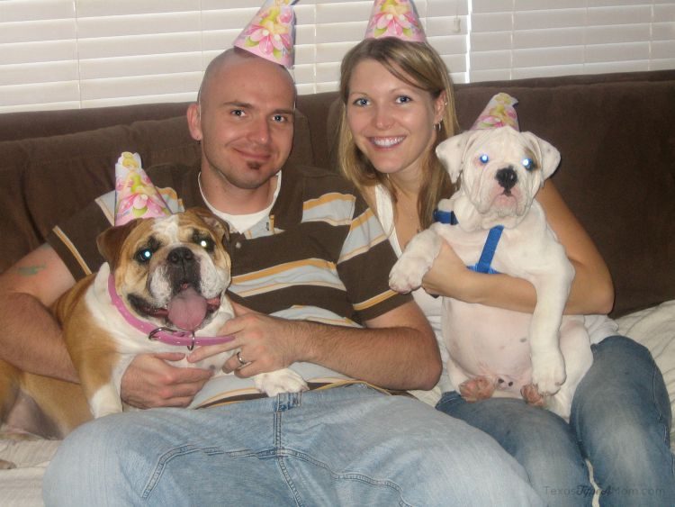 Family Dog Birthday Photo #PetsLoveBeyond #ad