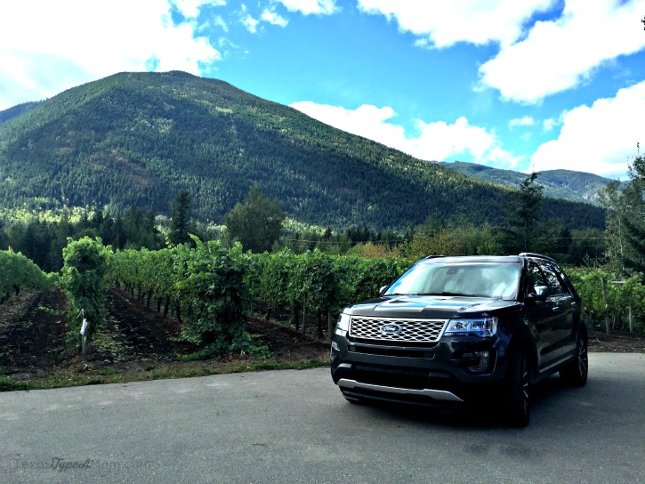 Ford Explorer in a Vineyard in Canada