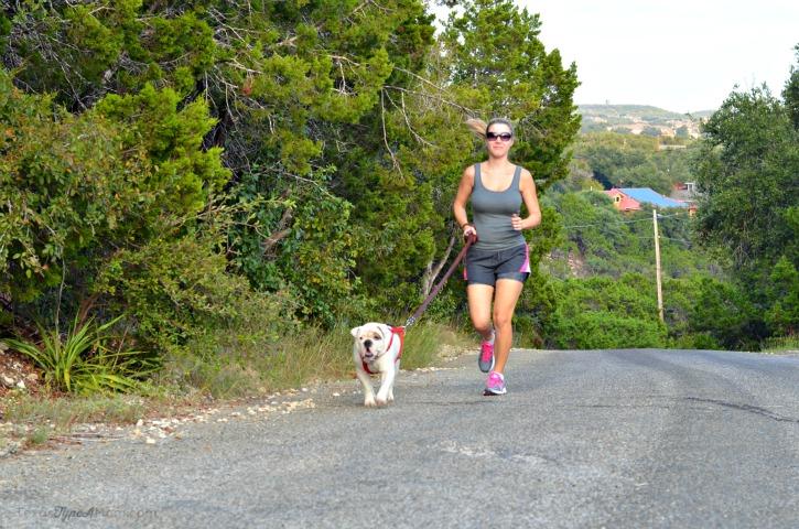 Running with Bulldog