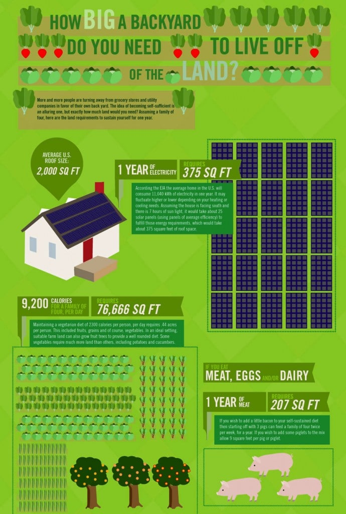 Ever think to yourself that you're self sufficient? Think again? Learn How Big a Backyard Do You Need to Live Off of the Land with this detailed photo to show you how to really maximize where you live!