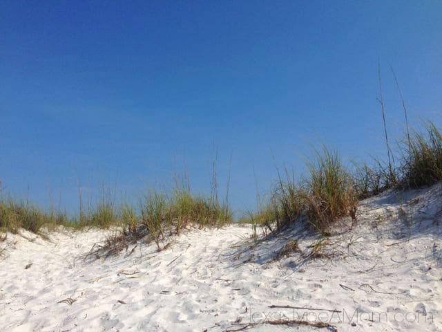 Panama City Beach Florida Sand Dunes