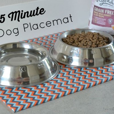 Easy 5 Minute DIY Dog Placemat