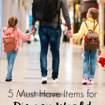 5 Must Have Items for Disney World