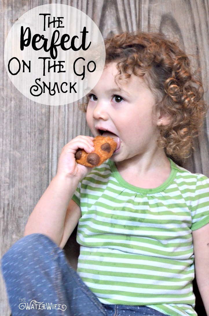 This is the perfect soft, sweet and kid pleasing on the go snack! Find out why it's loved by kids and approved by moms!