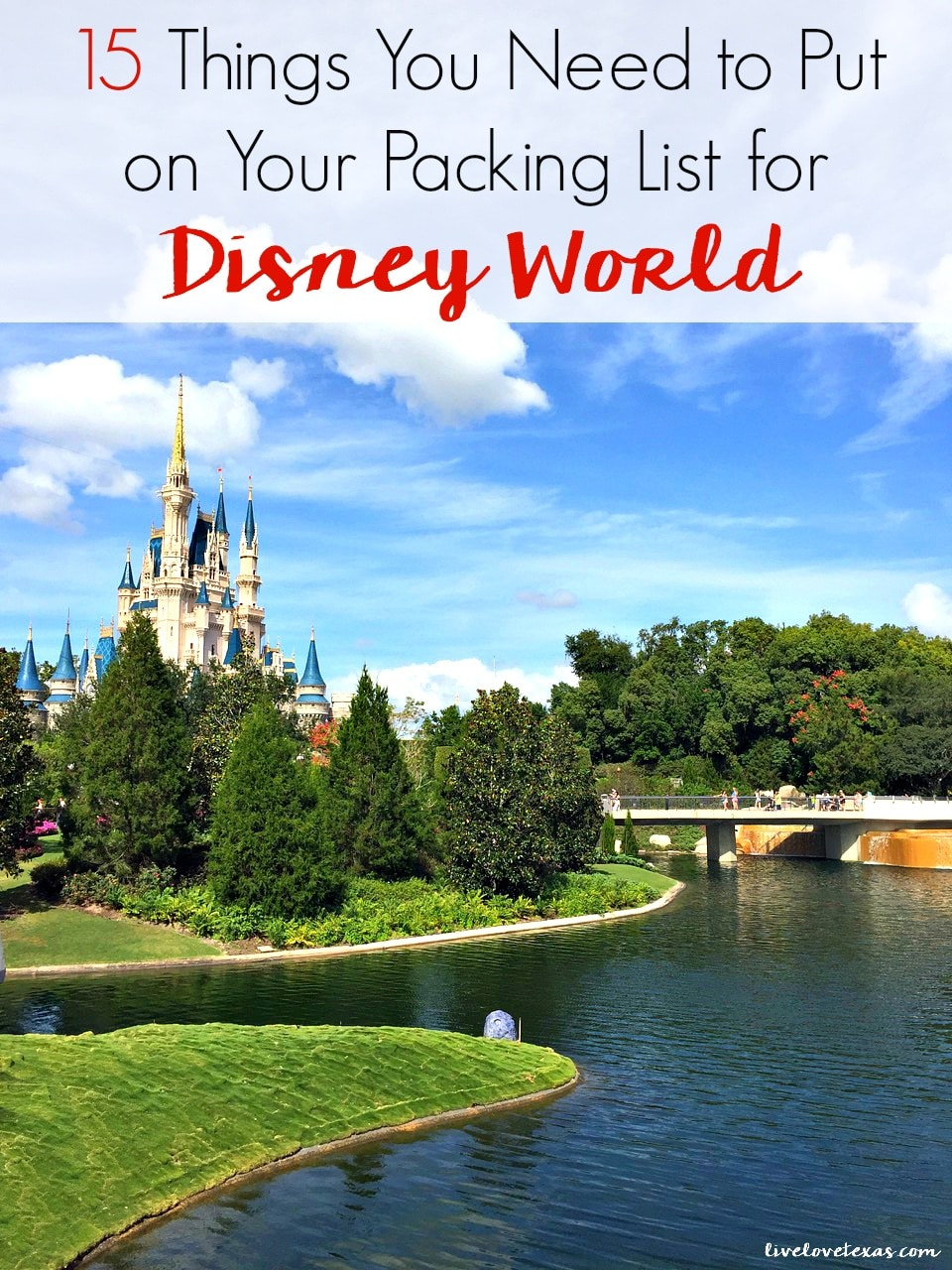 Don't plan the vacation of a lifetime without reading this post of the must have items you need on your packing list for Disney World!