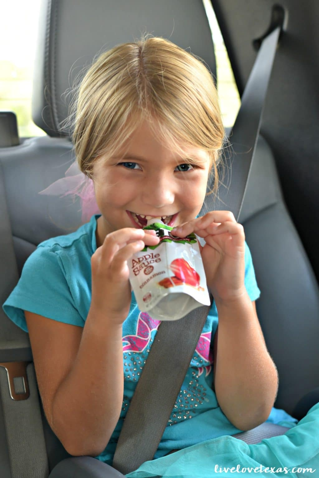 "Tired of being asked, ""Are we there yet?"" Don't get trapped in the car without these 5 Road Trip Must Haves with Kids to Save Time and Your Sanity!"