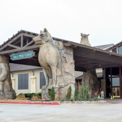 Everything You Need to Know About Great Wolf Lodge Grapevine Texas Review