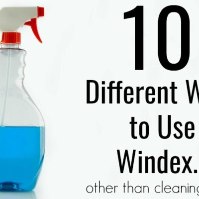 10 Different Uses for Windex: Use Windex For More Than Just Cleaning Windows