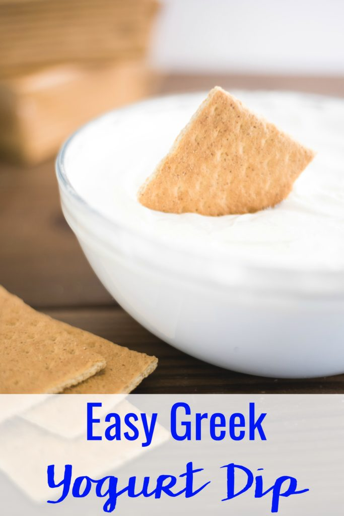 Take snack time to the next level with this Easy Greek Yogurt Dip Recipe for Crackers and Fruit that uses just 2 ingredients!