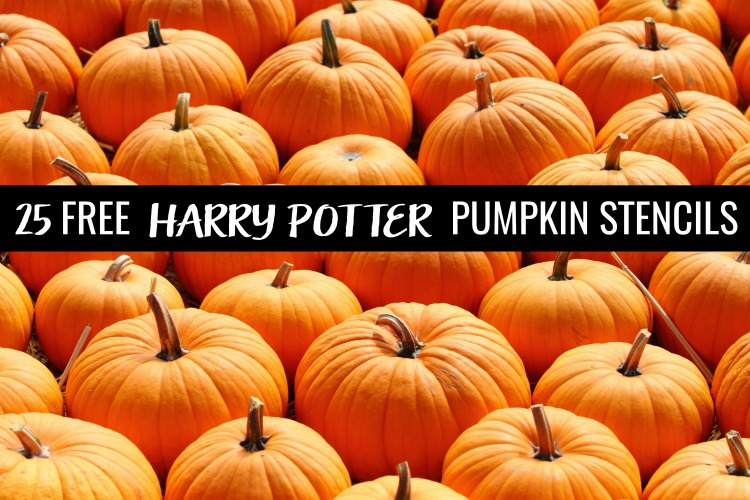 pumpkin patch with 25 free harry potter pumpkin stencils