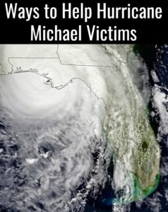 If you're like the rest of the country, you've been glued to the news watching as Hurricane Michael brought down its wrath on the people of Panama City. I was born there and want nothing more than to give back to relief and rebuilding efforts in Panama City. Here are some Ways to Help Hurricane Michael Victims.