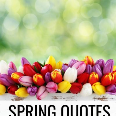 15 Spring Quotes to Celebrate the Changing of the Seasons