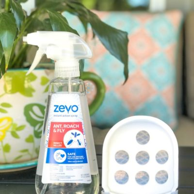 How to Get Rid of Insects in Your Home – Zevo Spray Review