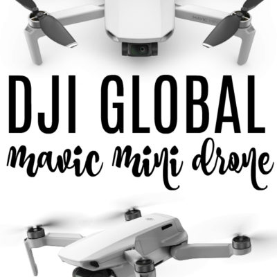 DJI Global Mavic Mini Drone