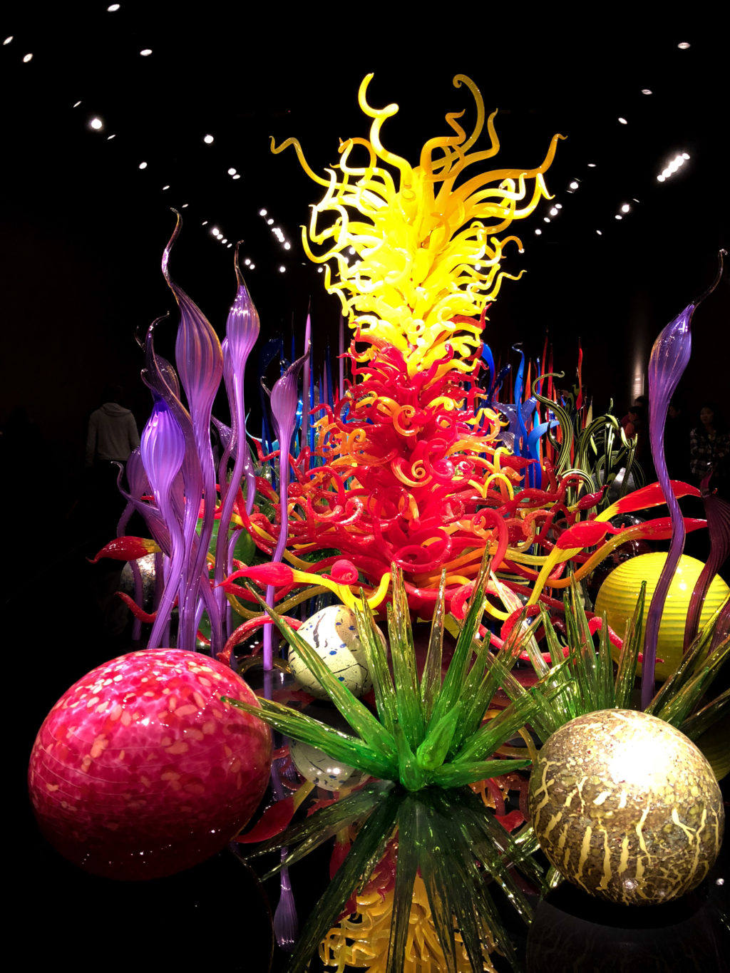 Things to do in Seattle - Chihuly Glass